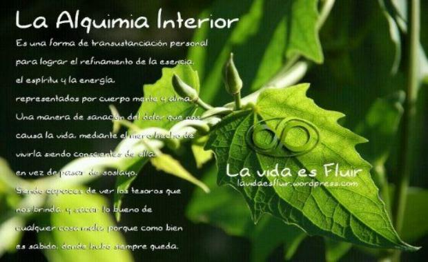 LVEF -ALQUIMIA INTERIOR-